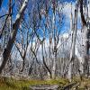 20 magnifiques clichés lors de notre trekking au Torres del Paine