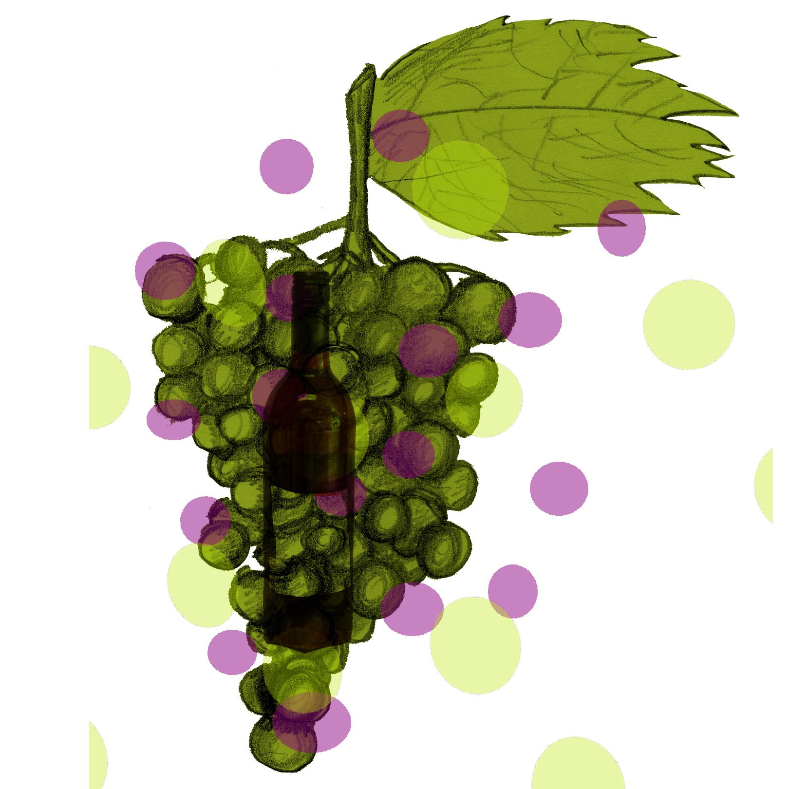 uvas botella