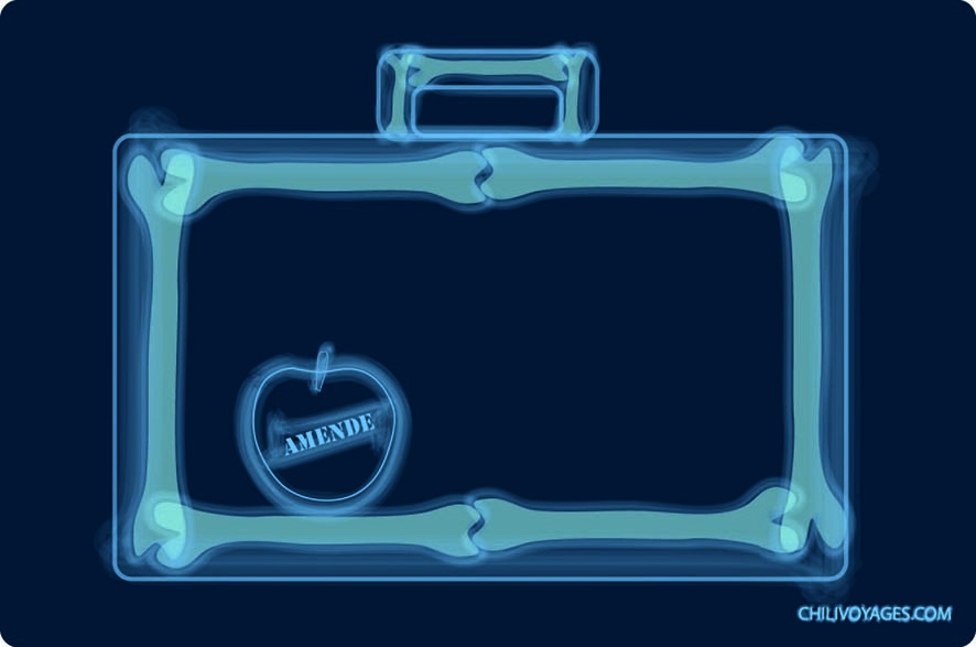 rayon X valise