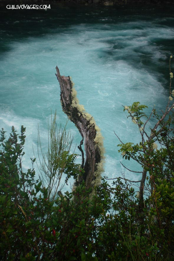 cascades a Vicente Perez Rosales
