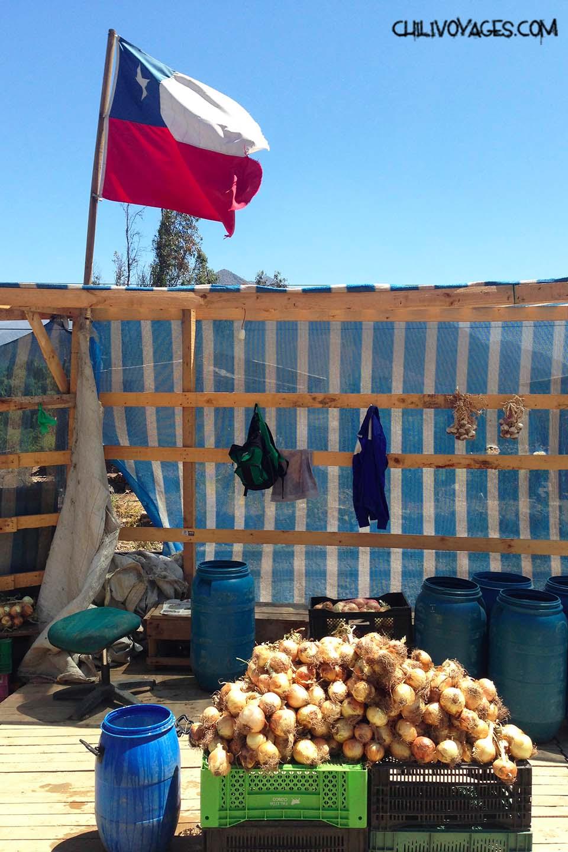 """Résultat de recherche d'images pour """"drapeau chili en ville"""""""