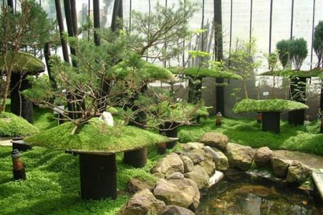 jardin los dominicos
