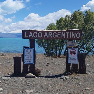 Lac argentine