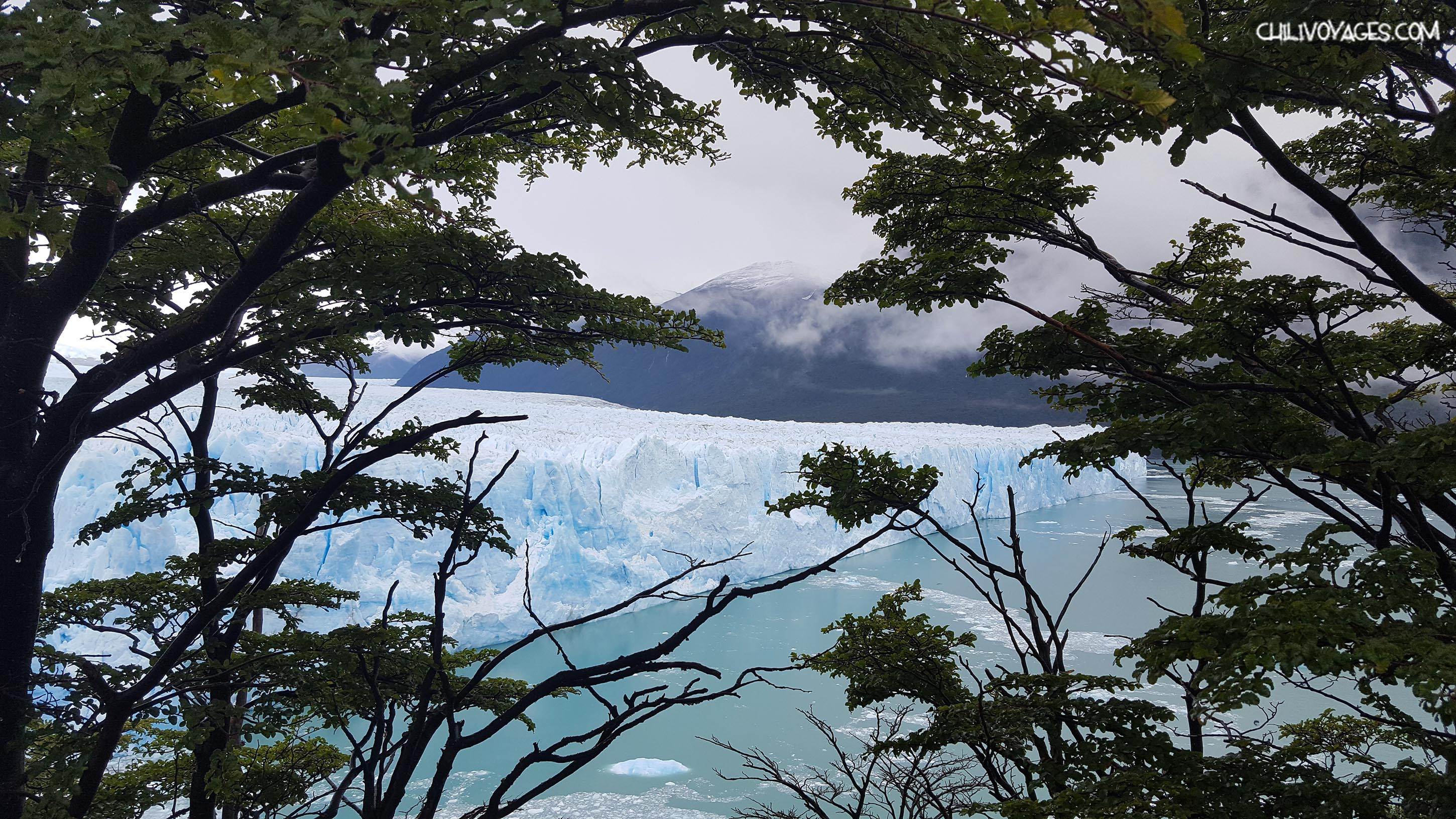glacier perito moreno rencontre avec un gla on g ant chili voyages. Black Bedroom Furniture Sets. Home Design Ideas