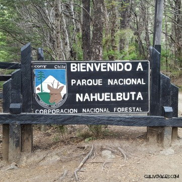parc national nahuelbuta