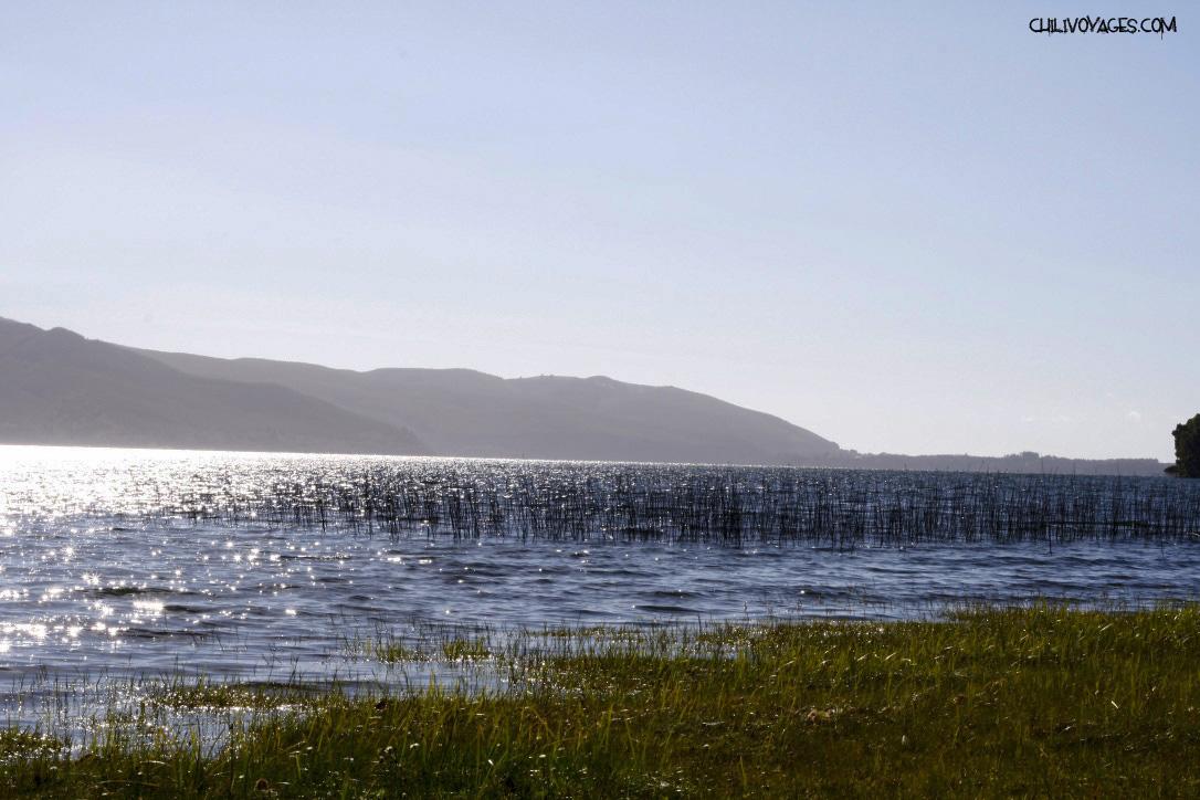 lac Lanalhue