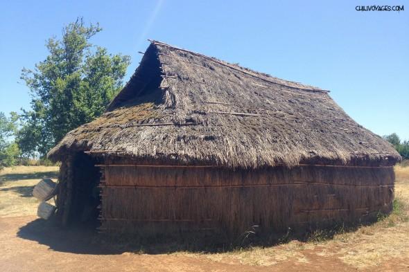 Ruka Mapuche