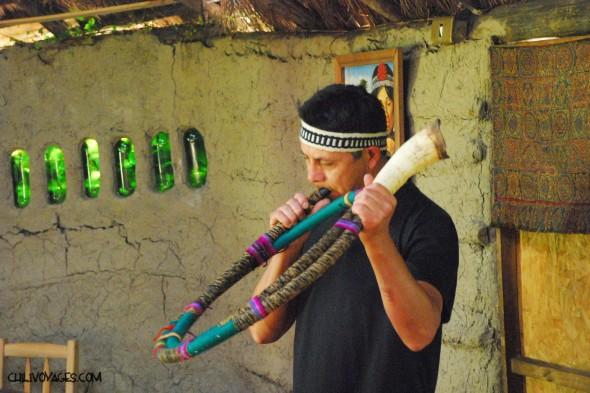 mapuches du chili